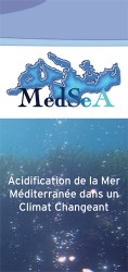 MedSeA leaflet back-French