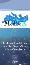MedSeA leaflet back-Spanish