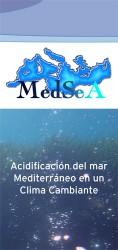 MedSeA leaflet back-Spanish
